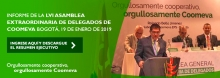 b_DIR_Asamblea_ENE2019