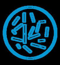 bacterias_laboratorio
