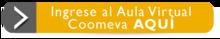155704---Ingrese-al-Aula