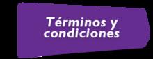 48429 - Botón - Terminos y Condiciones