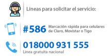 33884 - Destacado