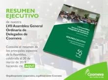 Resumen-Ejec-Asamblea