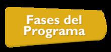 56092 Fases del programa