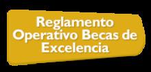 48114 - Reglamento Operativo Becas de Excelencia