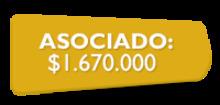 155867 Asociado