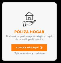 155895-Poliza-Hogar