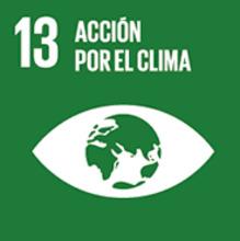 13 ACCION POR EL CLIMA