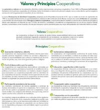 Img publicación principios y valores