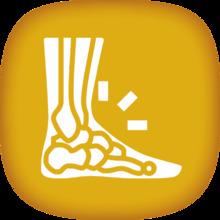 Lesiones osteoarticulares.