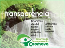 transparencia3