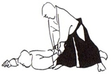 ppp_aikido