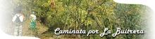 i_buitrera