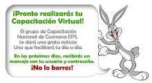 peps_conejo