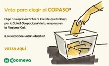 copaso4