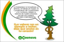 p_visita_bvqi7