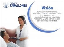 fara_vision_2008