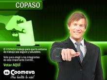 p_copaso3