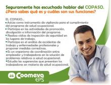 copasoEPS_2008_1