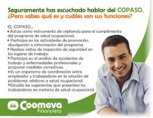 copasoFIN_2008_1