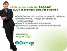 p_copaso2EPS-EJE