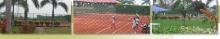 C7844_26408_tennis