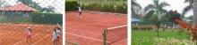 C7844_26408_tenis_11