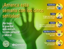 Plantilla 5Ss_2