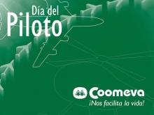 p_piloto2008