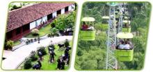 593907_28019_Visite-el-Eje-Cafetero-Espectacular-salida-al-Parque-Nacional-del-Café_06