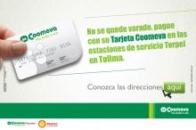 p_Tolima