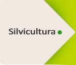 Induguadua_silvicutura_over