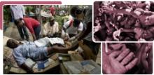 29905_Apoyemos-la-campaña-de-ayuda-a-los-damnificados-de-Haití_03