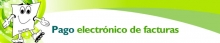 registro_rpagpelectronico_intranet