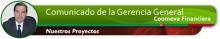 enc_Gerencia_FinancieraProyectos