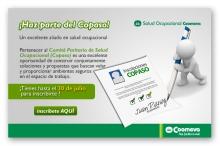 p_copaso2010