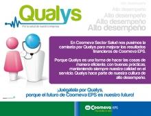 p_Qualys2