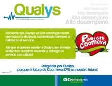 p_Qualys3