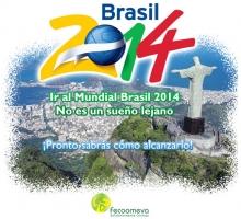 p_brasil2014