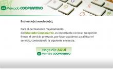 p_encuestaMercado