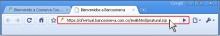 i_Chrome