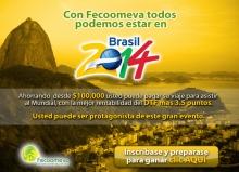 p_brasil2014_V4