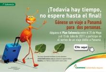 p_hormigas_Medellin
