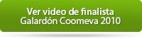 vervideo2010