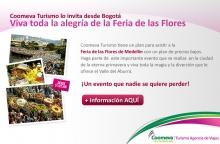 p_feriaFlores