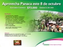 p_panacaOCT2011