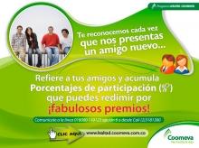 p_Referidos_Amigo