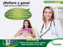 p_referidos_embarazada