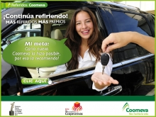 p_referidos_2_2012