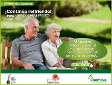 p_referidos_5_2012