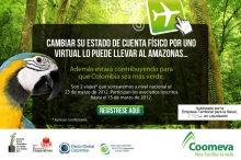 p_verdeAmazonas